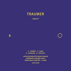 A1 Traumer - Hoodlum - Snippet   DESOLAT