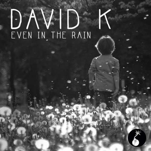 David K. - Even in The Rain (Promoset May 2014)