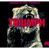 Kiddkino Triumph Drake Trophies Remixed Mp3