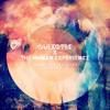 Quixotic & The Human Experience - Ot Du Shi (Whitebear Remix)