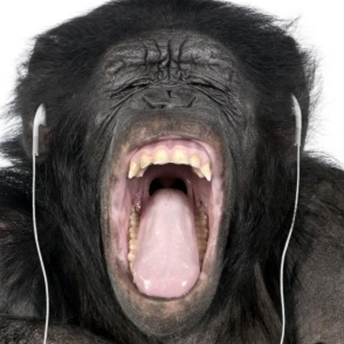 Skinny Chimp Bass Party Garage Anthems ( DJ Ms Pink )