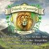 Download Fantan Mojah - Roots & Culture [Herb Family Riddim |More Life Productions &  VIS Records 2014] Mp3