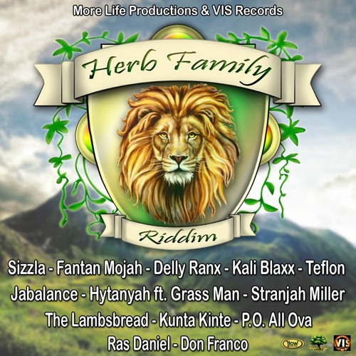 Fantan Mojah - Roots & Culture [Herb Family Riddim |More Life Productions &  VIS Records 2014]