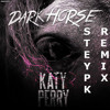 Katy Perry Feat Juicy J - Dark Horse ( Steypk Remix )