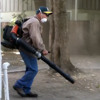 The Leaf Blower Experience
