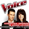 Christina Grimmie & Adam Levine -Somebody That I Used To Know (The Voice Performance)