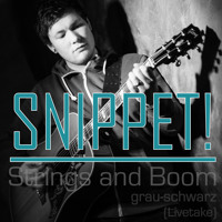 Snippet - grau-schwarz (Livetake)
