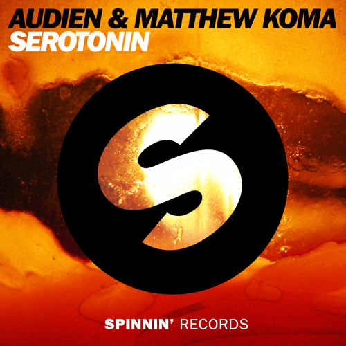 Audien & Matthew Koma - Serotonin [OUT NOW] (Danny Howard rip)