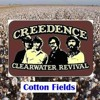Cotton Fields - Creedence Clearwater Revival [cover]