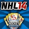QUESTION: WAGER, PINKSLIPS ON NHL 14