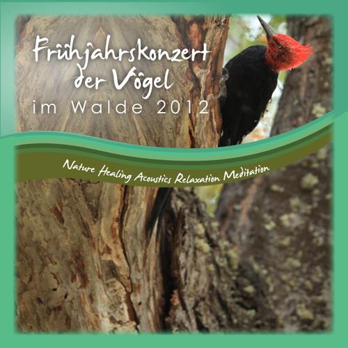 Frühjahrskonzert Vögel Wald  2012 Naturgeräusche Nature Sounds Meditation Relaxation healing