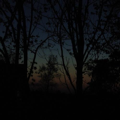 Nightingales At Night - 20th May 2013 - 2.05am