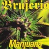 Don Quijote Marihuana / Brujeria