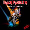 Iron Maiden - Infinite Dreams Cover Bass & Guitar
