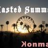 Wasted Summer (feat. Tiesto, Matthew Koma, Clavin Harris, Cuti, Elephante, Ummet Ozcan)