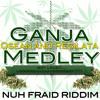 GANJA MEDLEY - Q - SEAN & REGILATA-NUH FRAID RIDDIM