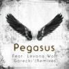 Pegasus Feat Levana Wolf - Gorecki Freemasons remix (edit)