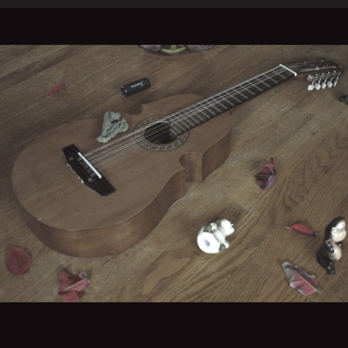 DIY Indie/Folk/Pop/Punk/Acoustic