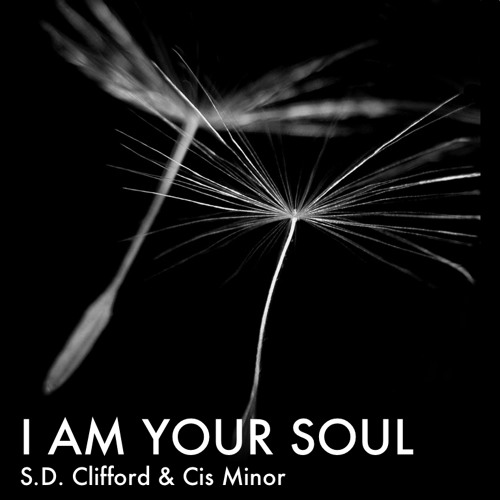 I AM YOUR SOUL - Poem By S.D. Clifford