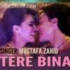 Tere Bina - Mustafa Zahid (Heropanti)