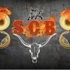 El Son del Tigre Banda Chilacachapa Sones Con Banda 2014