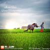 Iwan Fals - Yang Terlupakan ( Rialum Cover )