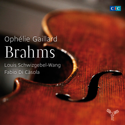 "Brahms ""Trio for clarinet, cello & piano-Allegro Alla Breve"" O.Gaillard, L.Schwizgebel, F.Di Càsola"