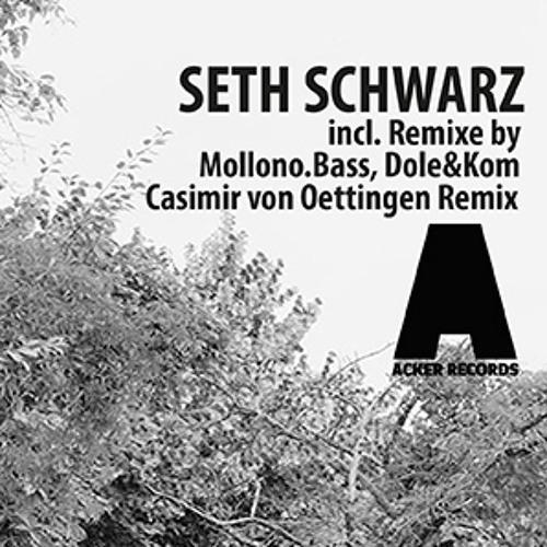 Seth Schwarz -Jabel EP Mini Mix