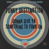 Funky Destination - Gonna Give Ya Something To Funk On (Cold Busted)