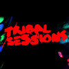 The element live at Sankeys Ibiza Opening Party -Tribal sessions 21-05-2014