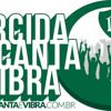 Tihuana - Hino do Palmeiras - Torcida que Canta e Vibra