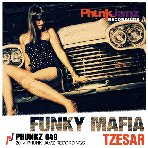 Funky Mafia (Original Mix)