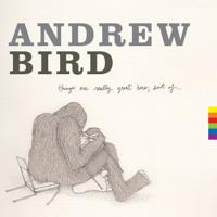 Andrew Bird - Tin Foiled