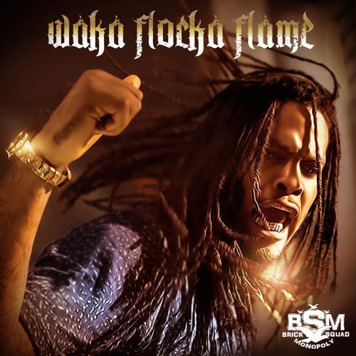 Waka Flocka Flame - Turn Down For What Remix