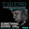 "Todd Terry ft.Martha Wash & Jocelyn Brown""Something going on""-Marc Fisher´s Newskool of Oldskool RMX"