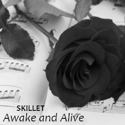 SKILLET - Awake and Alive (cover - duo) by Sempiternaly