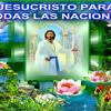 He Pecado Contra Ti   Adoracion--MKADDESH mp3