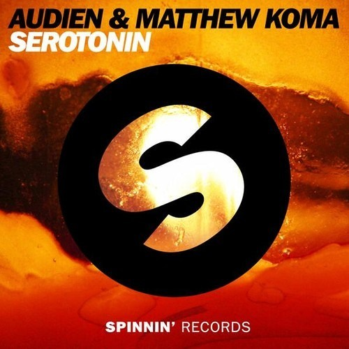 Audien & Matthew Koma - Serotonin (Original Mix) FREE DOWNLOAD