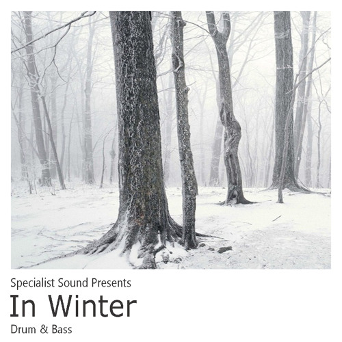Specialist Sound - In Winter