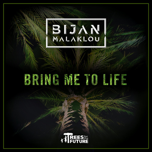 Evanescence - Bring Me to Life (Bijan Malaklou Remix)