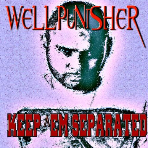 Wellpunisher - Keep 'em Separated (original mix)