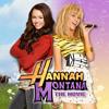 The Climb (Hannah Montana Tribute)