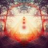 Kognitif - Lovely Dark / Album
