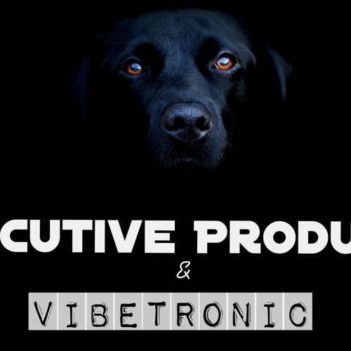 Executive Producer & Vibetronic (My beer preview track ) Free download