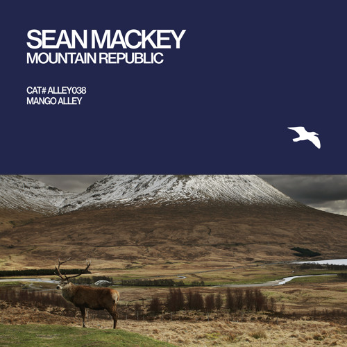 Valley Case (Original Mix) [Mountain Republic LP]