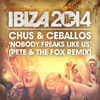 Chus And Ceballos - 'Nobody Freaks Like Us (Pete And The Fox Remix)'