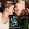 """""""Tee Shirt"""" - Birdy (The Fault in Our Stars OST)"""
