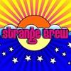 STRANGE BREW- Cheap Sunglasses (cover)