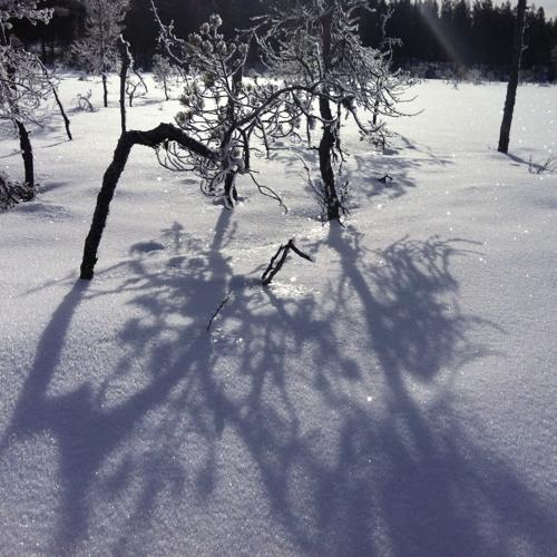Sometimes in winter ( Blood, Sweat and Tears ballad)