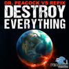 Dr. Peacock & Repix - Endless